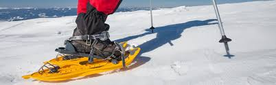 The Snowshoes Guide Sierra