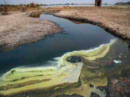 Water Pollution: The Invisible Threat The World Is Ignoring