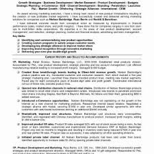 Sample Resume For Vice President Sales And Marketing Best Sample