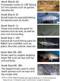 Fishing Hooks Britishseafishing Co Uk