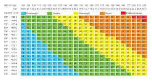 Bmi Chart Women Uk Health Check Alpine Health Club