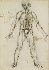 leonardo da vinci between art and science themes and essays  leonardo da vinci art anatomy and humanism