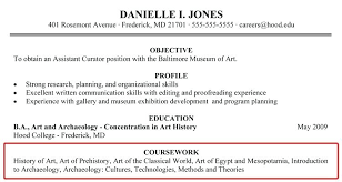 Study Abroad Resume Sample Objectives Section Of Resume Study Abroad Objectives In Resume