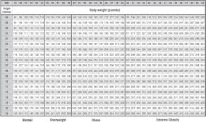 Wallpaper Measuring Chart Wallpaper Conversion Chart 40 Images