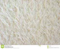 download comp white shag carpet texture25 white