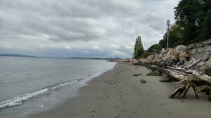 My Favorite Park In Everett Review Of Howarth Park