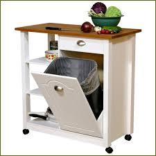 Kitchen Trash Bin Cabinet Trash Can Cabinet Insert C8