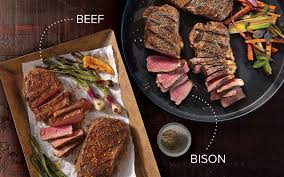 the differences between bison and beef