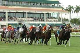 gulfstream park thoroughbred ownerview thoroughbred owners toba concierge services ← pimlico