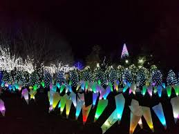 Enjoying The Winter Lights At Nc Arboretum Asheville With Kid