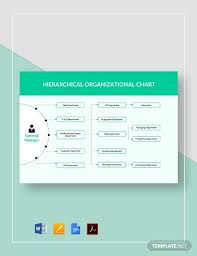 Hierarchical Organizational Chart Template Pdf Word