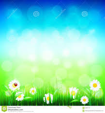 green grass blue sky flowers. Green Grass And Blue Sky With Flowers Vector R