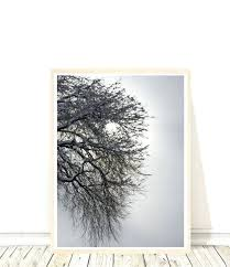 Winter Tree Template Winter Tree Templates Image 0 Winter Tree Outline Printable