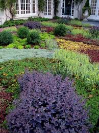 ground cover plants lawn alternatives