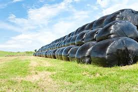Green And White Silage Bag Capacity 500 Kg To 2 Ton Rs 390 Piece