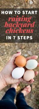 Convincing Reasons To Keep Backyard ChickensHow To Keep Backyard Chickens