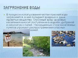 Реферат Загрязнение водных систем Реферат по биологии на тему загрязнение воды
