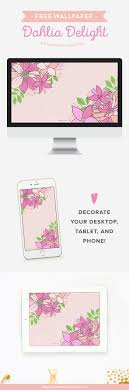free wallpaper dahlia delight in peach and pink