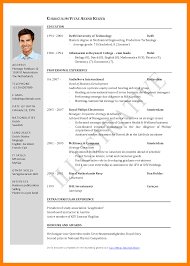 Curriculum Vitae Format Doc Resume Format Job Application Example