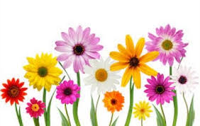 Image result for Free April clipart