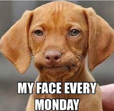 Funny Monday Morning Quotes Magnificent 48 Funny Monday Morning Faces Stuff Pinterest Funny Monday