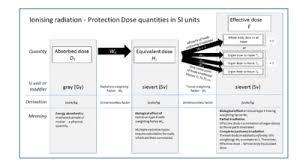Si Unit Conversion Chart Sievert Wikipedia