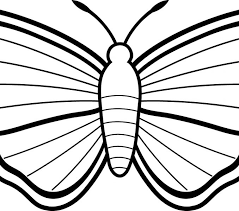 Small Picture Butterflies Coloring Pages Best Coloring Pages adresebitkiselcom