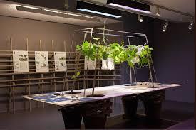 Alive Botanical Factory Design And Botany Workshop