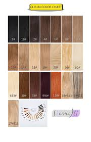 Wig Color Chart Codes Wig Color Chart