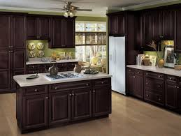Kitchen Example Displaying The Armstrong Cabinet Style Lacerise With The Autumn Brown Finish