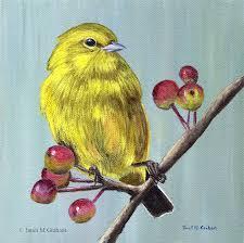 yellow warbler bird wildlife original acrylic painting berries colourful