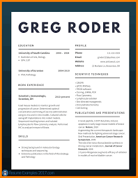 Best Resume Format 2017 100 professional cv format 100 sephora resume 17