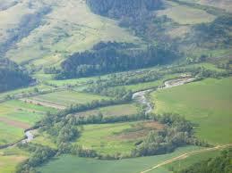 Târnava Mică River