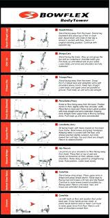 Weight Bench Exercise Online Charts Collection