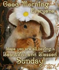 Sunday Beautiful Quotes Best Of Good Morning Beautiful Sunday Quotes Quote Days Of The Week Sunday