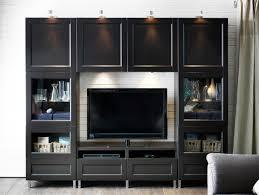 amazing splendid shelf furniture glass door tv stands shelving ideas full size with besta shelf unit with door