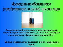 Презентация на тему Изучение влияния химических веществ  10 Слева анализ образца мяса справа контрольный опыт