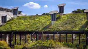 12 types of eco friendly houses