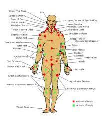 Pressure Point Chart Martial Arts Martial Arts Martial Arts Pressure Points