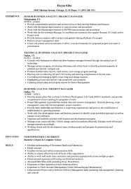Business Analyst Project Manager Resume Sample Business Analyst Project Manager Resume Samples Velvet Jobs 12