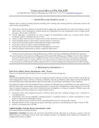 Resume for Internal Auditor Position