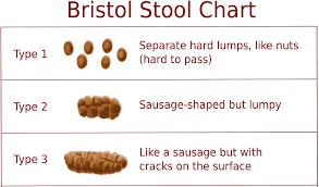 Faeces Bristol Stool Chart Bowel Charts The Work Of The Devil Drjustincoleman