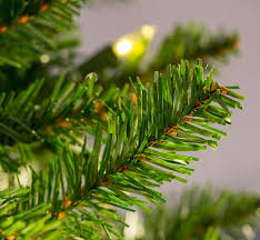 National Tree PreLit 612u0027 Kingswood Fir Hinged Pencil Kingswood Fir Pencil Christmas Tree