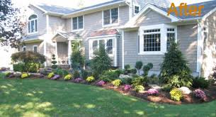 Landscape, Terrific Green Round Traditional Grass Front Of House Landscaping  Ideas Decorative Flowers Ideas: