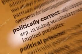 political correctness definition essay political correctness  hd image of political correctness definition essay sample essay for you