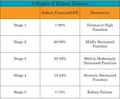 Gfr Kidney Function Chart Understanding Kidney Disease Nephcure Kidney International