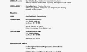 How To Make A Resume For A Teenager First Job. Fair Sample Resume ...