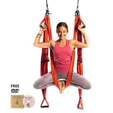 Yogabody Official Store Yoga Trapeze Yoga Wheel More