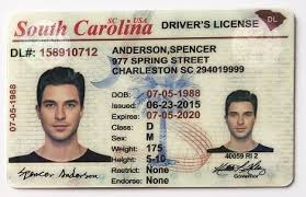 South Fake Drivers To Spot A License Carolina How
