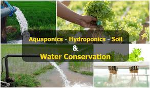 Image result for aquaponics and hydroponics